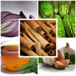 Alguna medicina natural para diabetes mellitus tipo 2