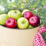 ¿Es buena la manzana para la diabetes?