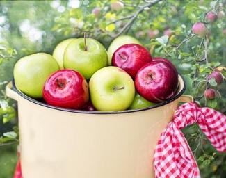 Manzana y diabetes