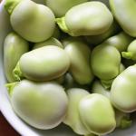 5 buenos alimentos que pueden comer los diabéticos